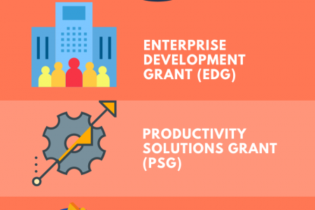 5 Government Grants to Fund Your Websites Infographic