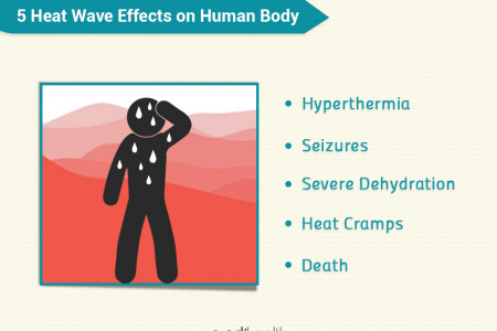 5 Heat Wave Effects on Human Body Infographic