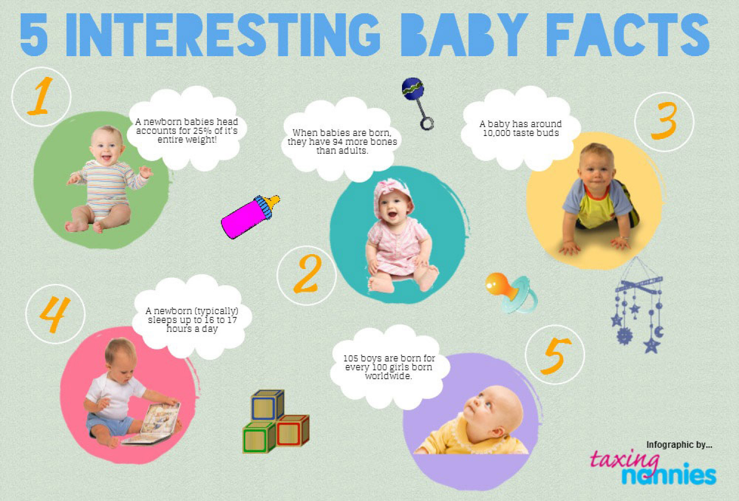 5 Interesting Baby Facts Infographic