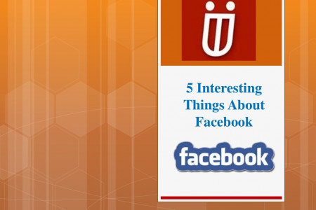 5 Interesting Things About Facebook Infographic