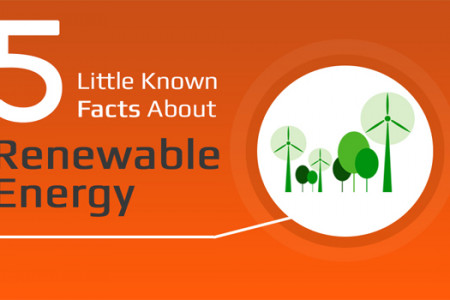 5 Little Known Facts About Renewable Energy Infographic