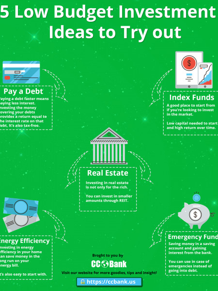 5 Low Budget Investment Ideas to Try out Infographic