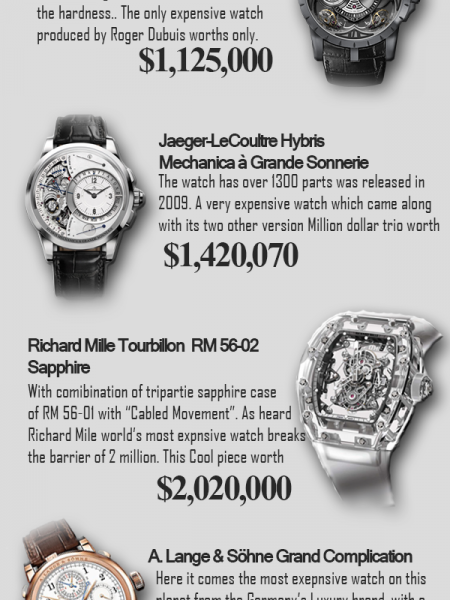 5 Most Expensive Watches Infographic