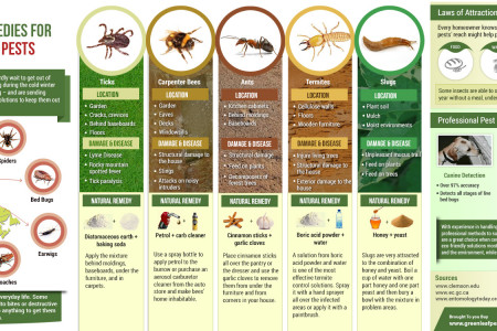 5 Natural Remedies for 5 Nasty Spring Pests Infographic