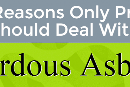 5 Reasons Only Pros Should Deal With Hazardous Asbestos Infographic