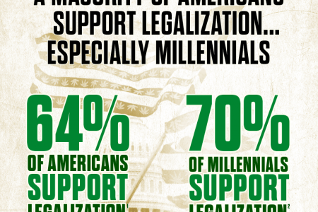 5 Reasons Why Marijuana Will Be Legalized in the US by 2020 Infographic