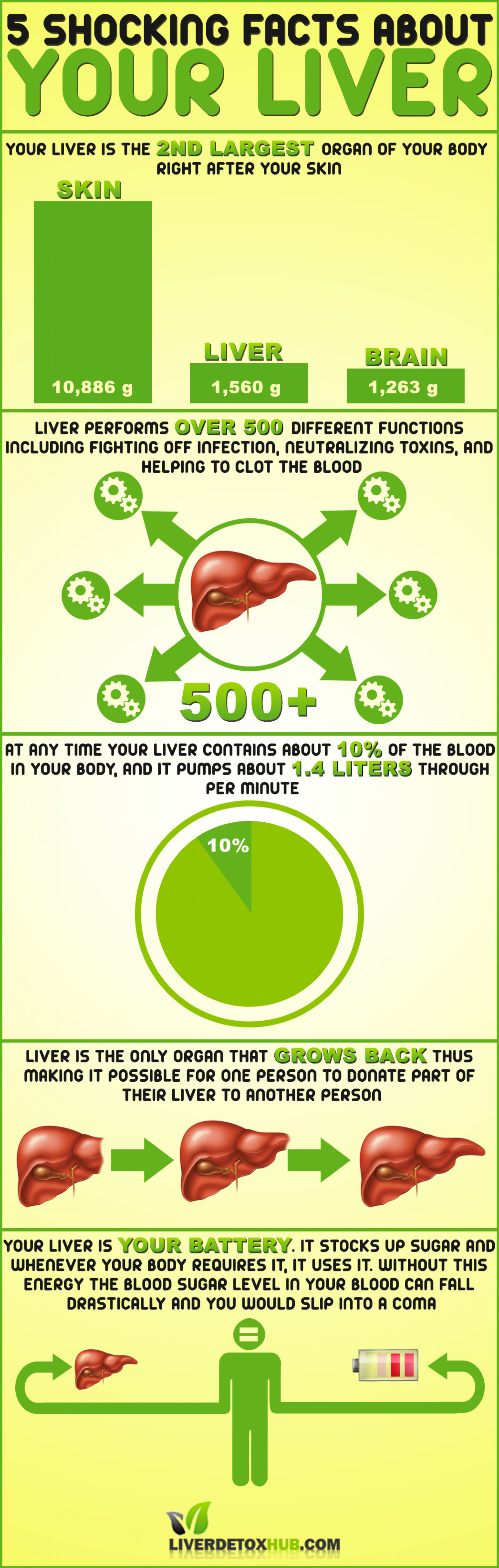 5 Shocking Facts About Your Liver Infographic