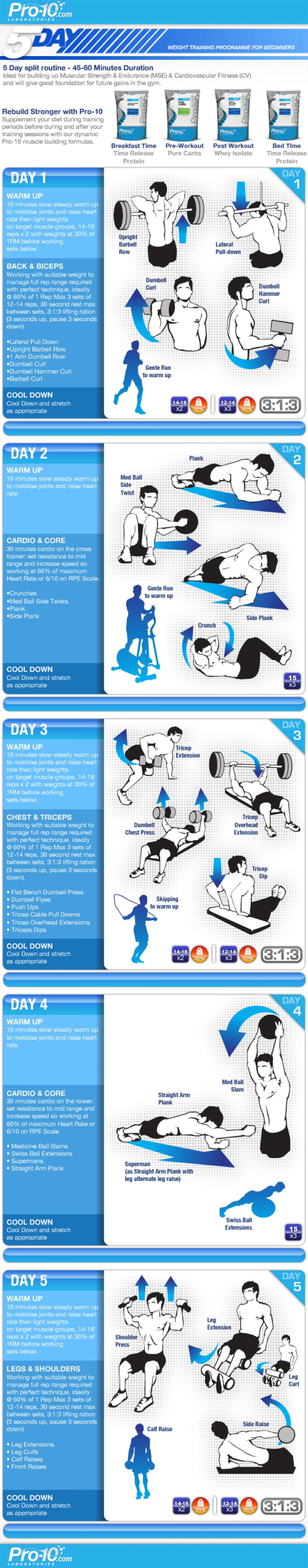 5 Step Guide to Training Routine Infographic