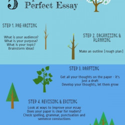 Perfect essay writer