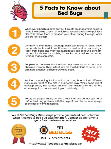 5 Facts to Know about Bed Bugs Infographic