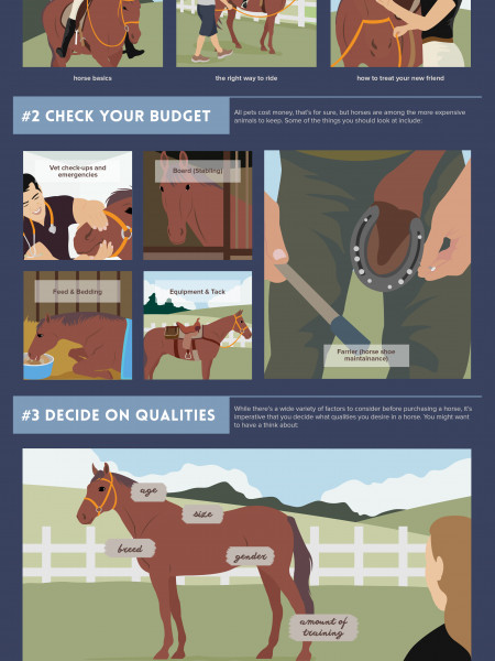 5 Things You Need to Know Before You Make a Commitment Infographic