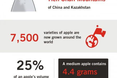 5 Things You Probably Didn't Know About Apples Infographic