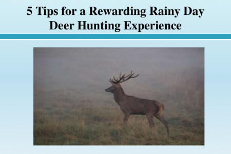 5 Tips for a Rewarding Rainy Day Deer Hunting Experience Infographic