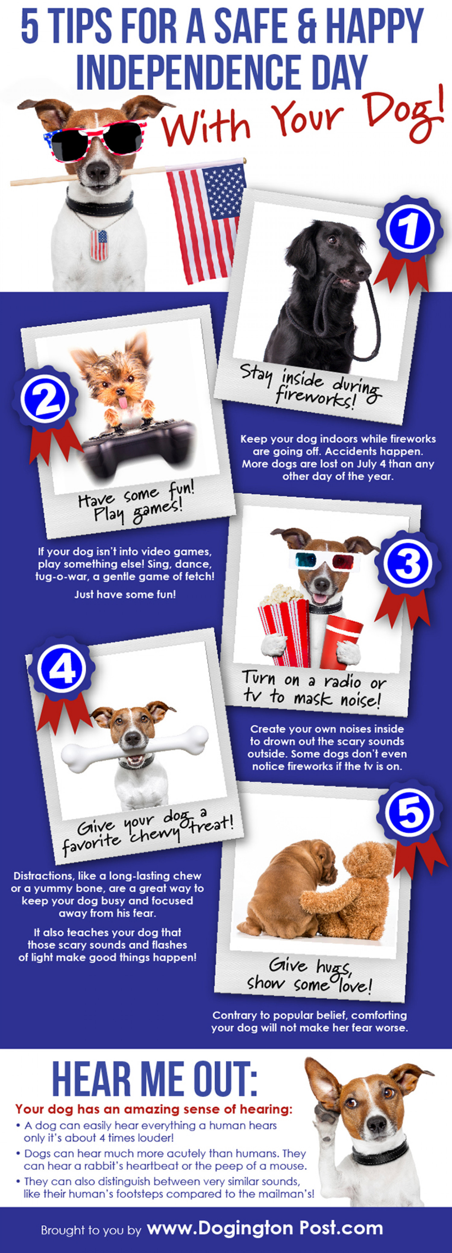 5 Tips for a Safe & Happy Independence Day With Your Dog Infographic