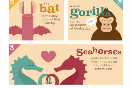 50 Amazing Animal Facts That Will Blow Your Mind Infographic
