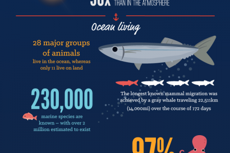 50 fascinating facts about the ocean Infographic
