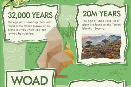 50 Insane Facts About Plants Infographic