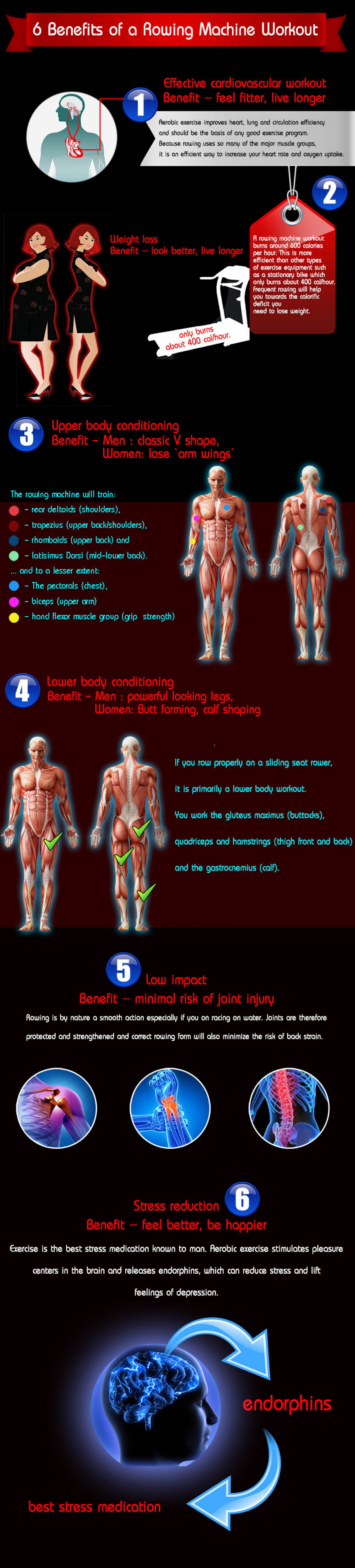 6 Benefits of a Rowing Machine Workout Infographic