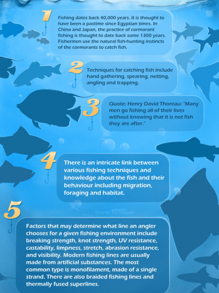 6 Facts About Fishing Infographic
