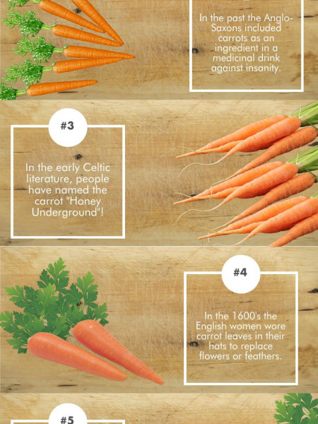 6 Things You Didn't Know About Carrots Infographic