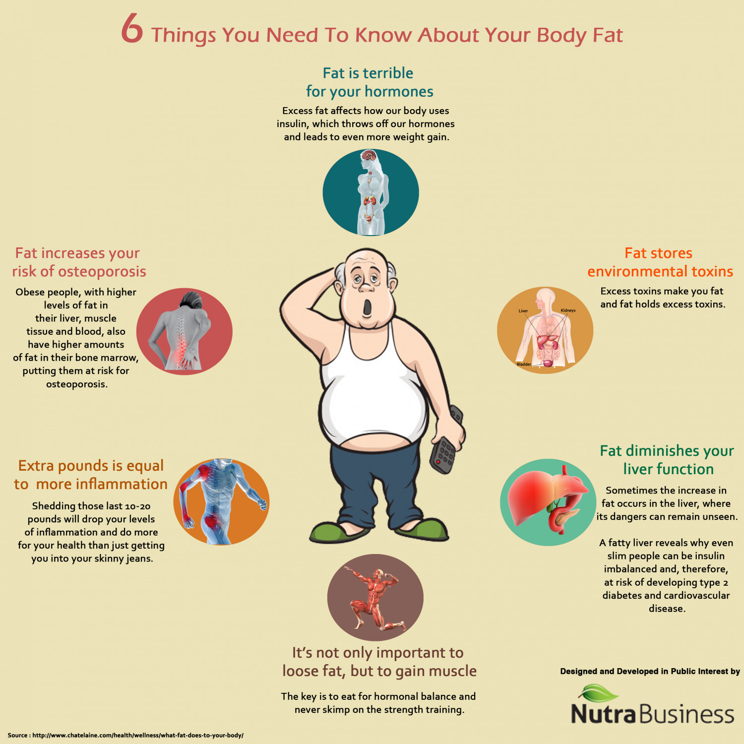6 things you need to know about your body fat Infographic
