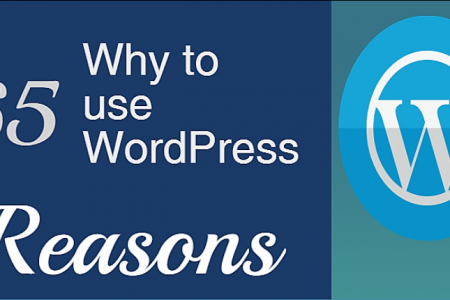 65 Reasons why to use WordPress for your website Infographic