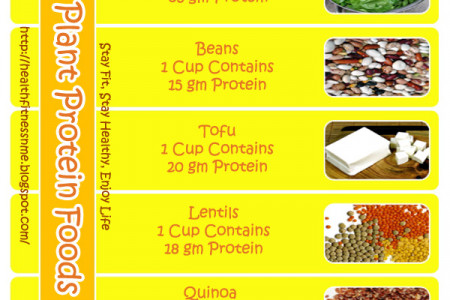 7  Plant Protein Foods Infographic