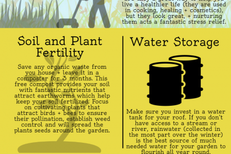 7 Brilliant Tips To Revive Your Garden Infographic