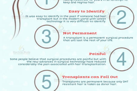 7 Common Myths About Hair Transplant Infographic