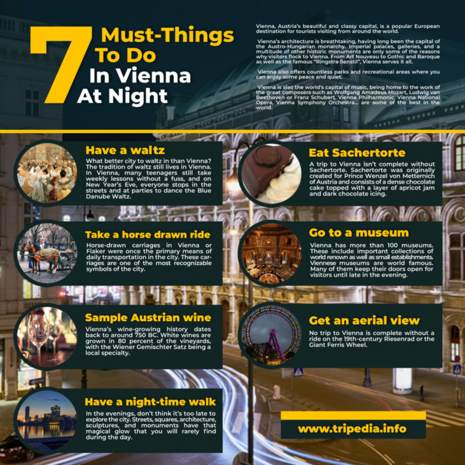7 Must-Things To Do In Vienna At Night Infographic