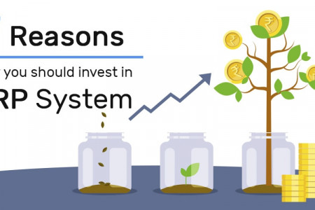 7 Reasons Why You Should Invest in ERP System Infographic