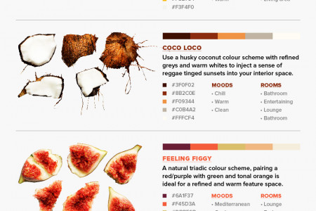 8 Colour Schemes From Nature For Your Home and Mind Infographic