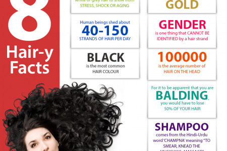 8 Hair-y Facts Infographic