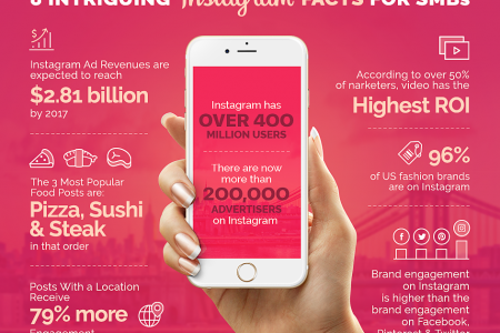8 Intriguing Facts About Instagram For SMB's Infographic