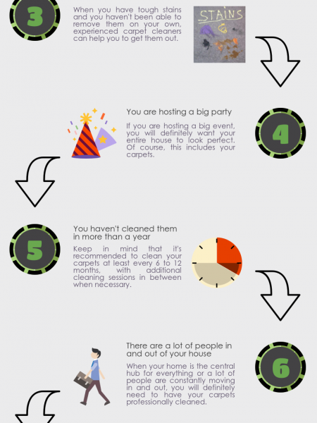 8 Reasons Why You May Need Professional Carpet Cleaning Infographic