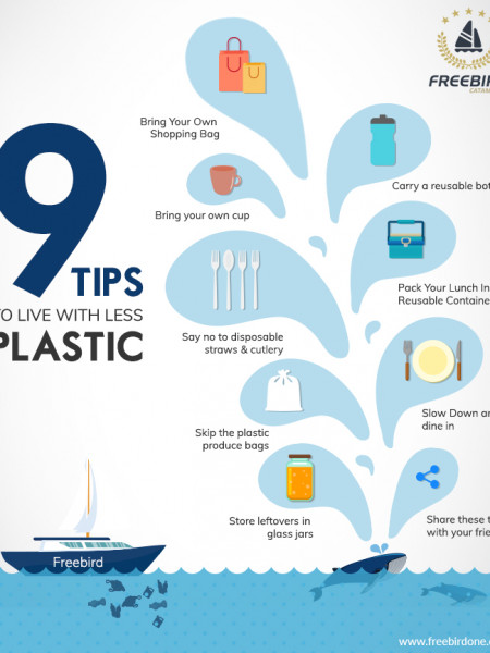 9 Tips to live with less plastic Infographic