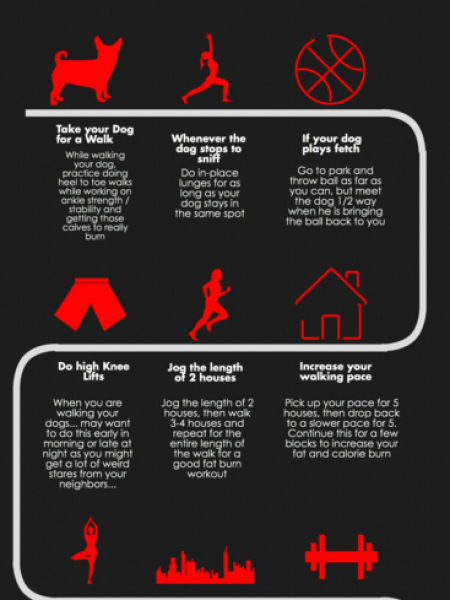 9 Ways to Workout While Walking the Dog Infographic