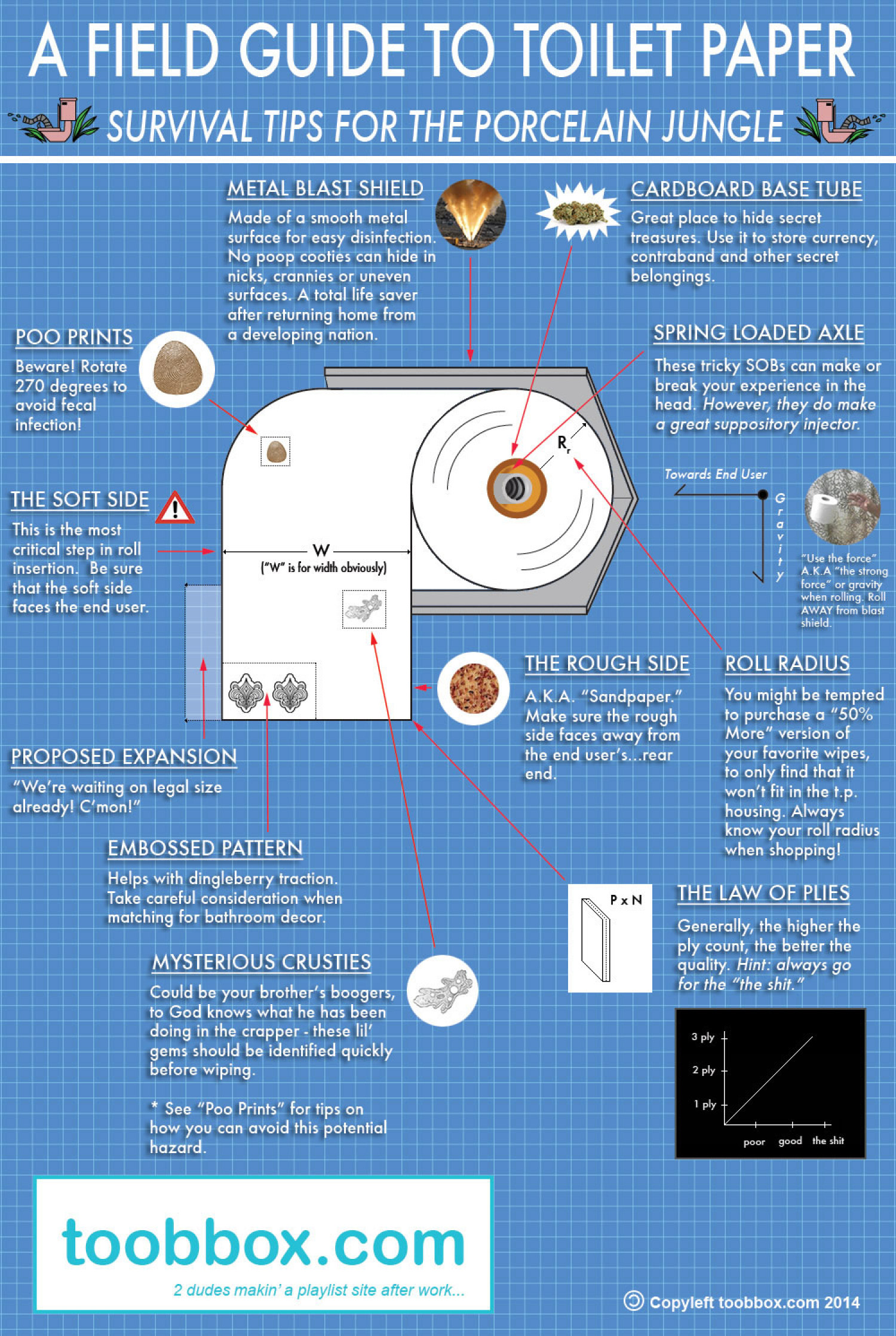 A Field Guide To Toilet Paper Infographic