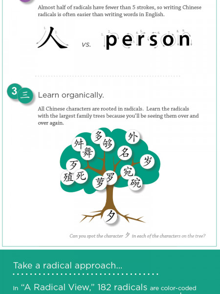 A Radical View of Chinese Characters Infographic
