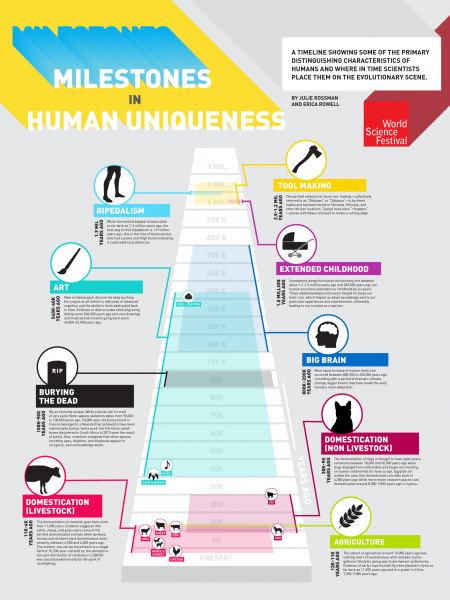 A Timeline of Traits That Make Humans Special Infographic