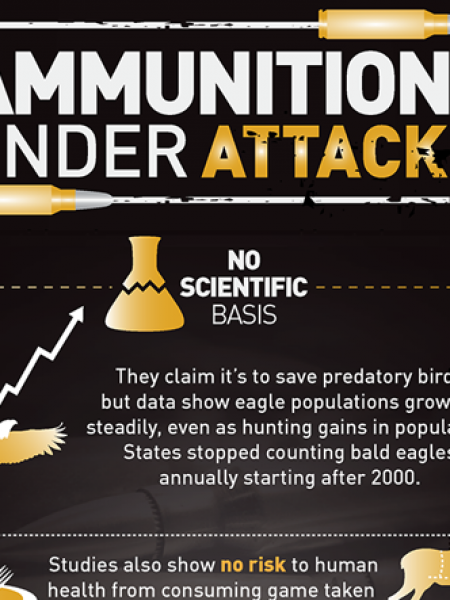 Ammunition Under Attack Infographic
