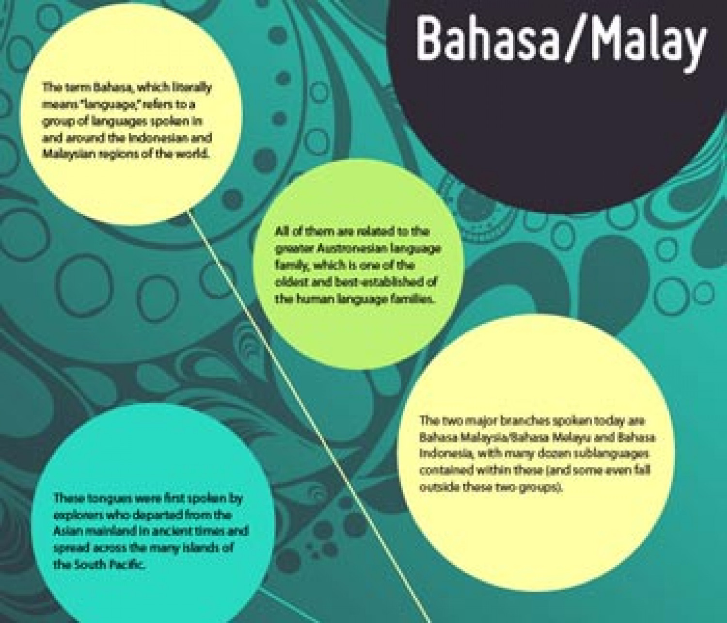 Bahasa/Malay Infographic Infographic