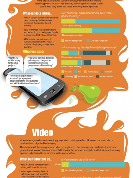 Blended Learning 2015: What does it look like? Infographic