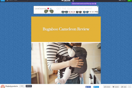 Bugaboo Cameleon Review Infographic