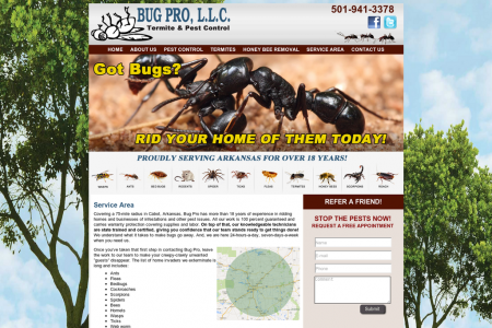 Bugs Removal Professional Services In Arkansas Infographic