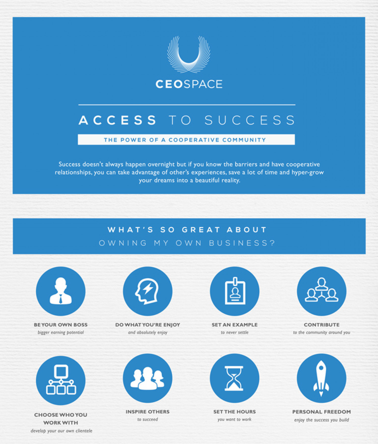CEO Space: Access to Success Infographic