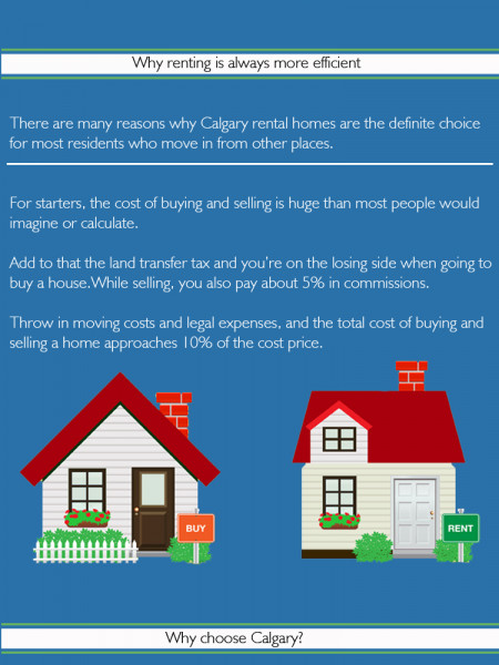 Find Catgary rental homes through reputed agencies Infographic