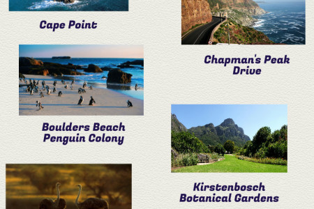 Cape Town Tourist Attractions Infographic