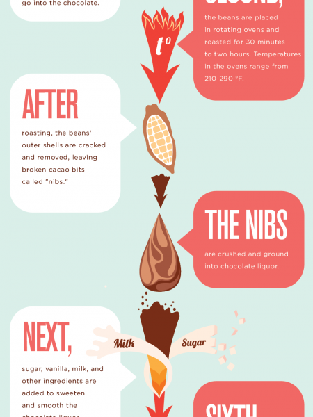 Chocoholic! Everything You Wanted to Know about Chocolate Infographic