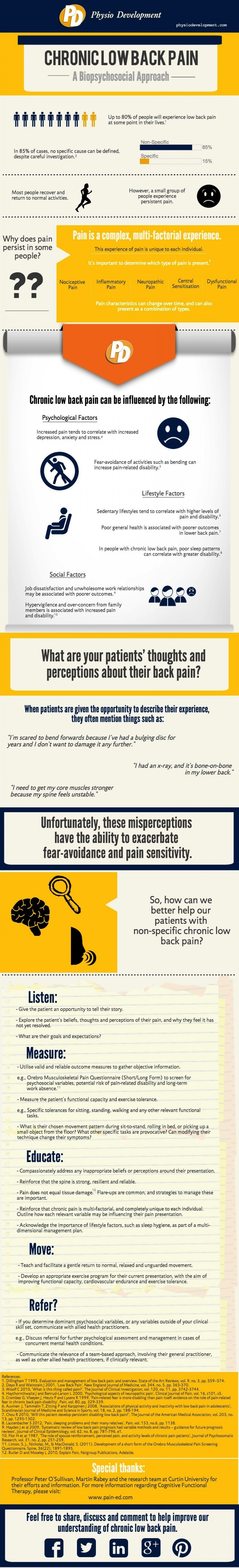 Chronic Low Back Pain: Physiotherapy Infographic